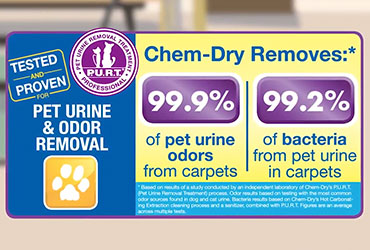 Chem-Dry - Pet Urine Removal Treatment Can Eliminate Pet Urine Odors Forever - P.U.R.T.